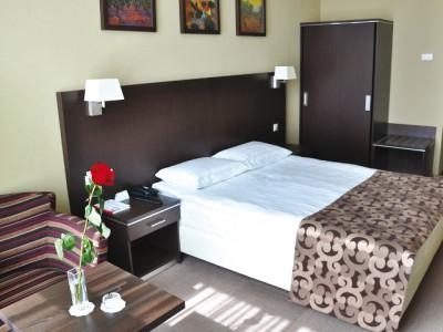 Номер с одной кроватью в современном стиле фото