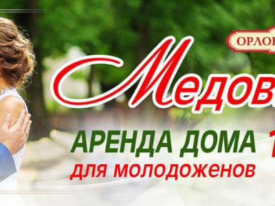 Медовые дни в Орловском поместье